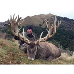 #SA-28 Tahr and Red Stag Hunt, New Zealand
