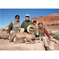 #FB-22 Desert Sheep Tag, Navajo Nation