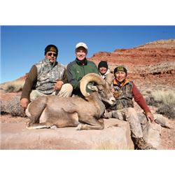 #FB-22 Desert Sheep Tag, Navajo Nation