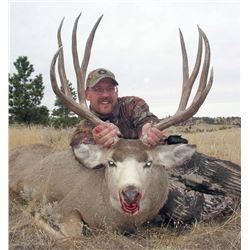 #FB-23  V.I.P. Wounded Veteran Hunt