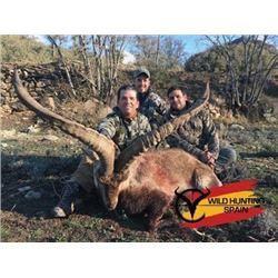#SLA-42 Southeastern Ibex Hunt, Spain