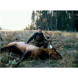 #SLA-43 Rocky Mountain Elk and Whitetail Rifle Combo Hunt, Idaho