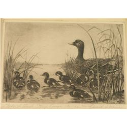Duck Stamp & Litho