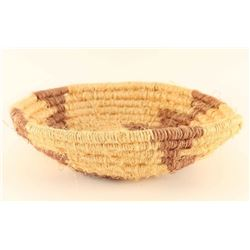 Arizona Native Basket