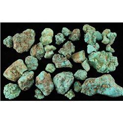 Genuine Campitos Turquoise