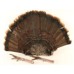 Turkey Feet & Fan