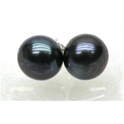 11-11.5mm Black Aaa South Sea Pearl Earring 14k White Gold