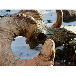 Bronze Dall Sheep Skull