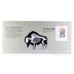 Porcelain Enamel Yellowstone Park Bison Info Sign