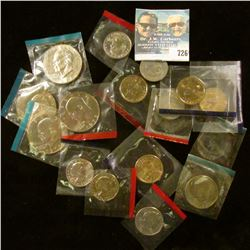 15 SUSAN B ANTHONY, SACAGAWEA, AND IKE DOLLARS FROM MINT SETS