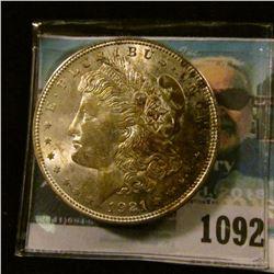1092 _ 1921 P U.S. Morgan Silver Dollar. Superb Brilliant Uncirculated with attractive toning.
