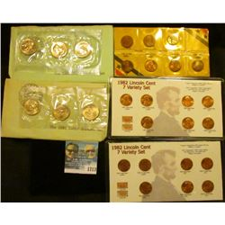 1713 _ 1979 & 1980 Susan B Anthony Three Dollar Souvenir Set Plus The 7 Varieties Of 1982 Memorial C