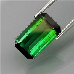 Natural Top Green Tourmaline 4.00 Ct
