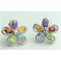 Stunning Multi Color Earrings