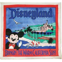 Disneyland Hanging Banner.