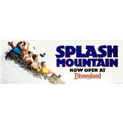 """Splash Mountain"" Grand Opening Banner Decal."