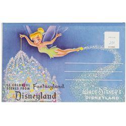 Fantasyland Souvenir Gift Mailer.