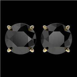 2.50 CTW Fancy Black VS Diamond Solitaire Stud Earrings 10K Yellow Gold - REF-51W3F - 33105