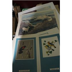 Folder of Animal & Bird Prints by 2 Different Artists - Clarence Fillenius & Fenwick Landsdowne