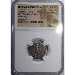 ANCIENT LUCANIA, POSEIDONIA COIN, NGC CH FINE