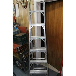 Extension/Multi Ladder
