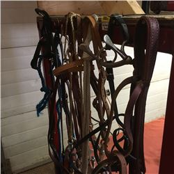 Group of Halters & Bridles