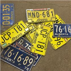 Collection of Lic Plates