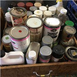 Box Lot: Variety Paints