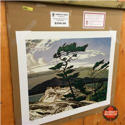 "Limited Edition Prints - Artist : Group of Seven ""White Pine"""