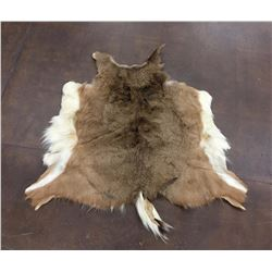 Hair-On Deer Hide