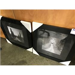 2 FRAMED LANDSCAPE PICTURES