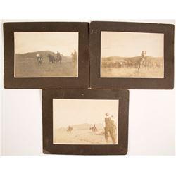 Three Mounted Photographs of Cowboys at Hot Sulphur Springs, Colorado