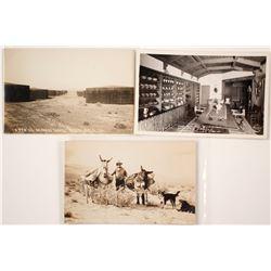 Three Southern California Desert Real Photo Postcards