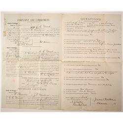 Lyon County, Nevada Insanity Commitment Document