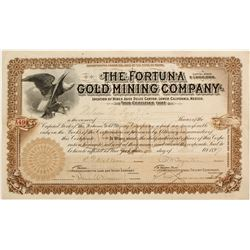 Fortuna Gold Mining Stock