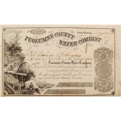 Tuolumne County Water Company Stock Certificate, 1854