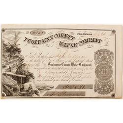 Tuolumne County Water Company Stock Certificate, 1862