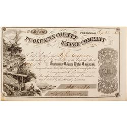 Very Clean Tuolumne County Water Co. Stock Certificate