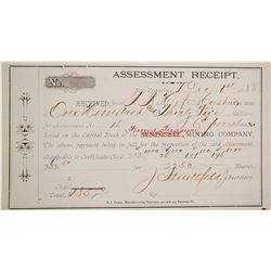Found Treasure Mining Co. Assessment Receipt, Tuscarora, 1888