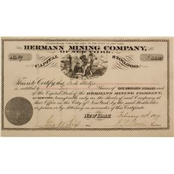 Hermann Mining Company of New York Stock