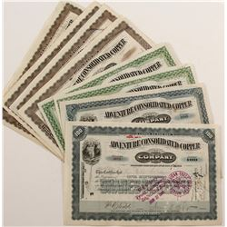 Adventure Consolidated Copper Company Stock Certificate Group