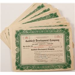 Goldfield Development Co. Stock Certificate Collection
