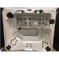 CAL SPA HOT TUB, AMERICAN LUXURY SERIES, CAMEO ACRY 90X90, 3 CONTOUR PILLOWS, 37 HALO STAINLESS