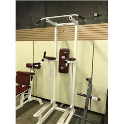 APEX CHIN DIP FITNESS STATION