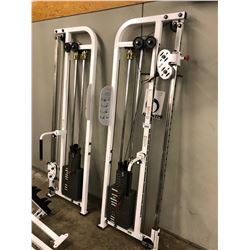 ATLANTIS NM-200 BACK/ABDOMINALS/LEG EXERCISE STATION