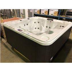 CAL SPA HOT TUB, AMERICAN SPAS SERIES, STERLING SILVER ACRY 90X90, LOUNGER, 30 STAINLESS STEEL HALO