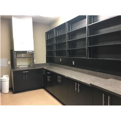ALL FURNITURE IN R & D ROOM, INCLUDING LABCONCO PROTECTOR LABORATORY HOOD