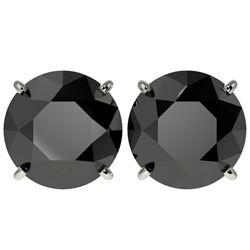 5.15 CTW Fancy Black VS Diamond Solitaire Stud Earrings 10K White Gold - REF-99Y5K - 36714