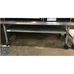 Equipment Stand -Stainless Steel 5ft