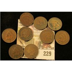 Bag of nine, 1900 Indian Head Cents.